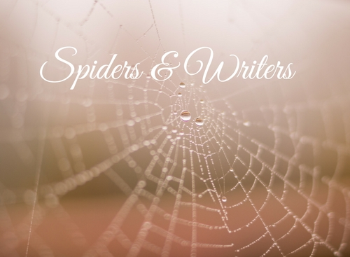Spiders & Writers