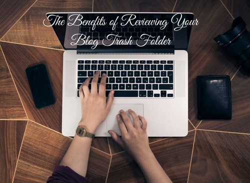 The Benefits of Reviewing Your Blog Trash Folder