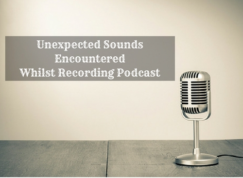 Unexpected Sounds Encountered Whilst Recording Podcast