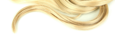 Image result for blond hair png