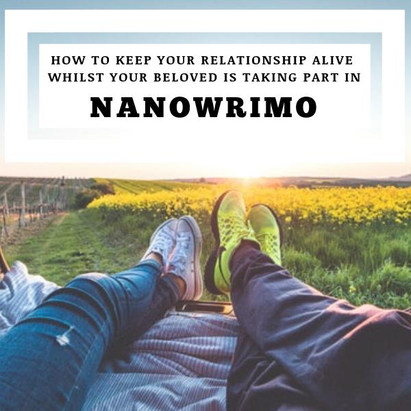 #NaNoWriMo #Writer